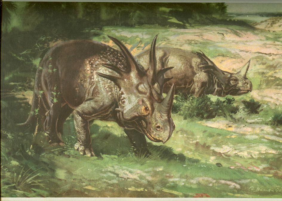 Love in the Time of Chasmosaurs: Vintage Dinosaur Art: Ladybird ...