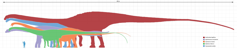 http://dinopedia.ru/img/dinoid/argentinosaurus/argentinosaurus_00.jpg