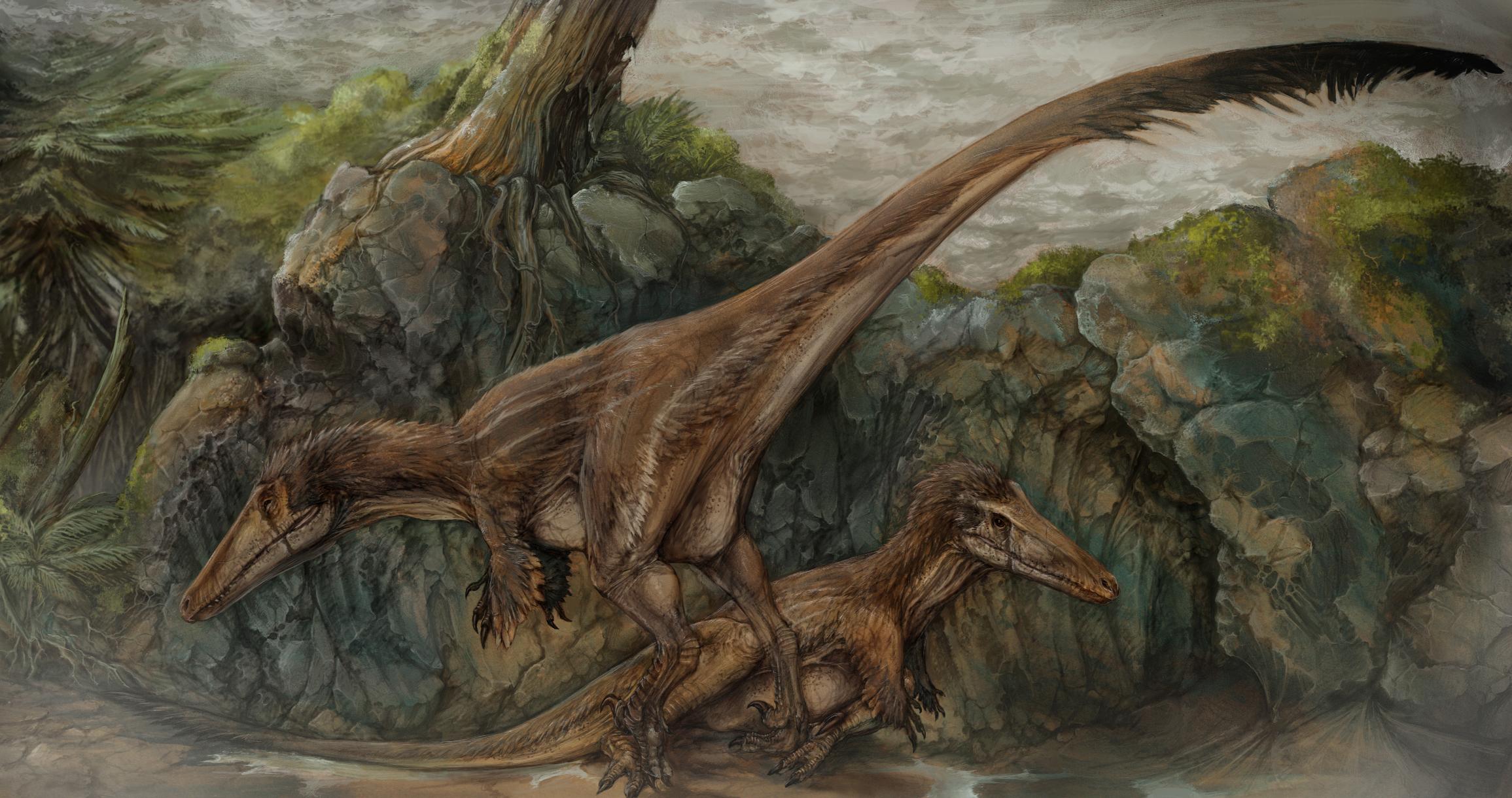 http://dinopedia.ru/img/dinoid/austroraptor/austroraptor_art/dig/big/austroraptor_01.jpg