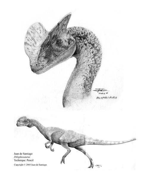 Dilophosaurus Drawing